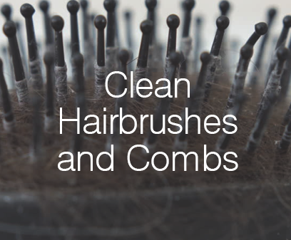 Clean Hairbrushes and Combs