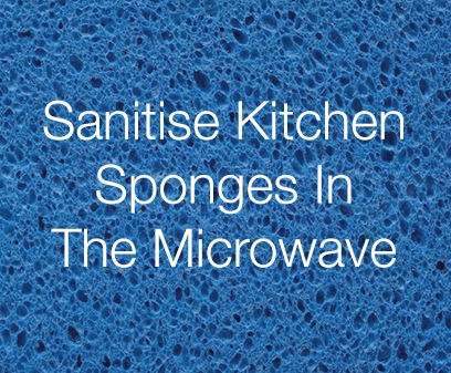 Sanitise kitchen sponges in the microwave